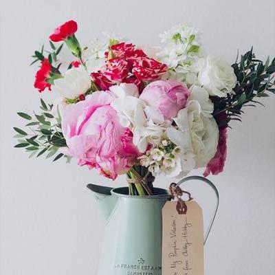 爱花的理由