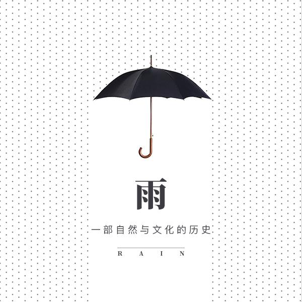雨:一部自然与文化的历史