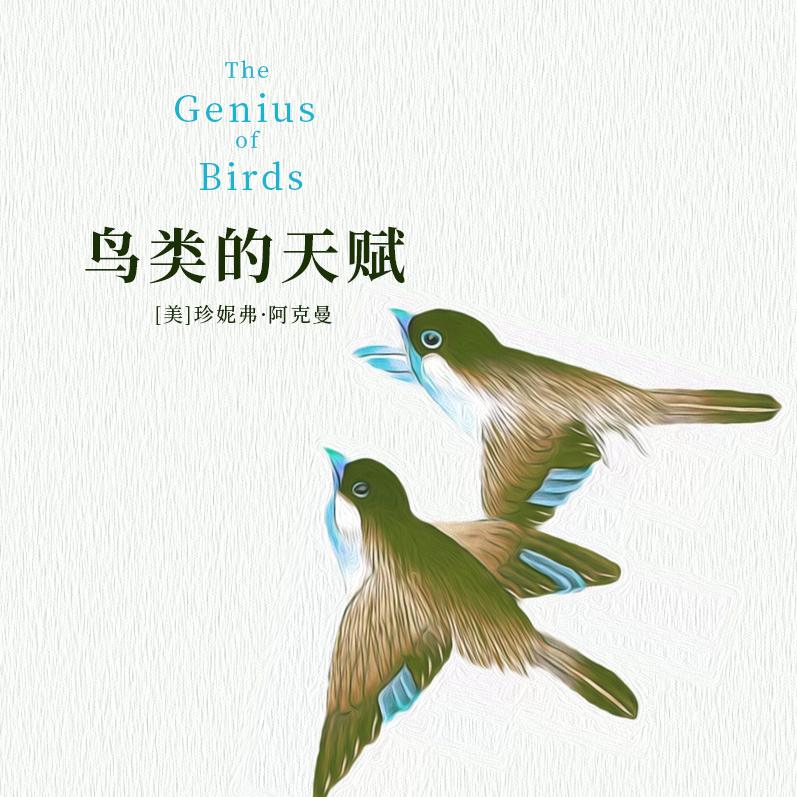 鸟类的天赋