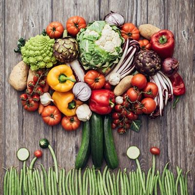 救命!逆轉和預防致命疾病的科學飲食