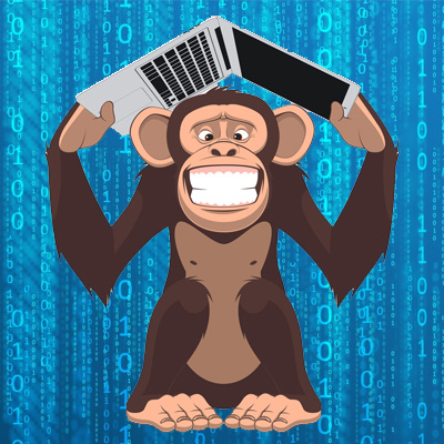 混亂的猴子
